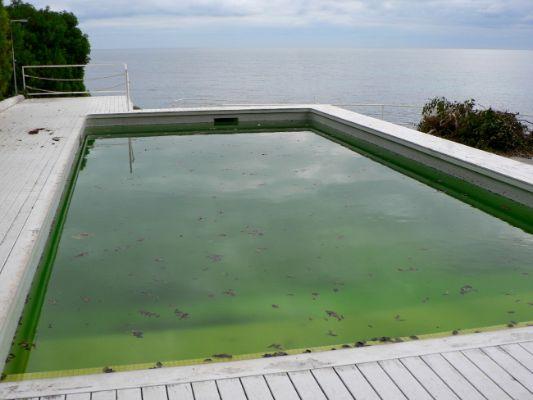 agua-verde-piscina